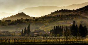Disponibile online la Relazione di attuazione 2016 del Psr Veneto