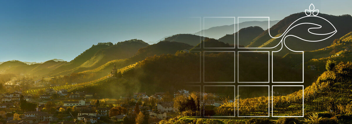 Misurare il cambiamento. I numeri e i risultati dello sviluppo rurale Veneto