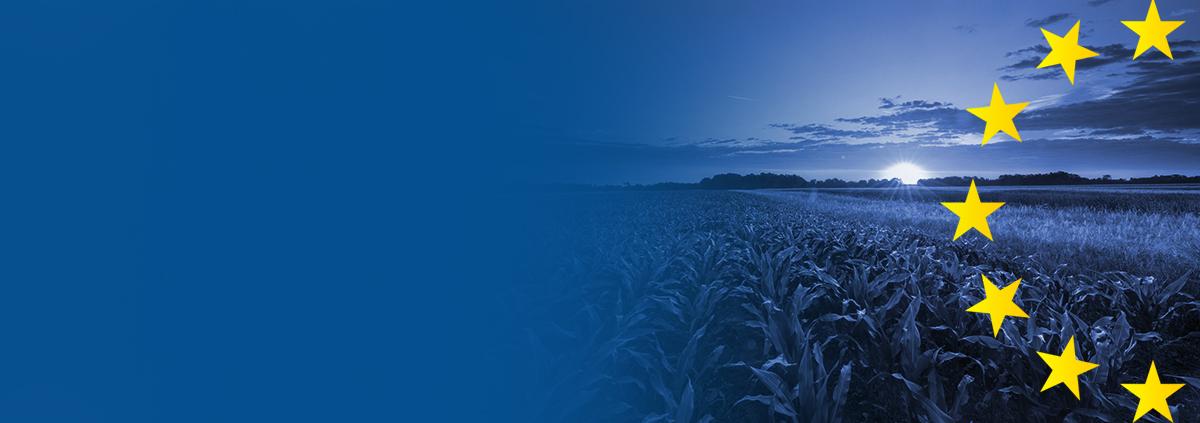 CONOSCI L'AGRICOLTURA EUROPEA?