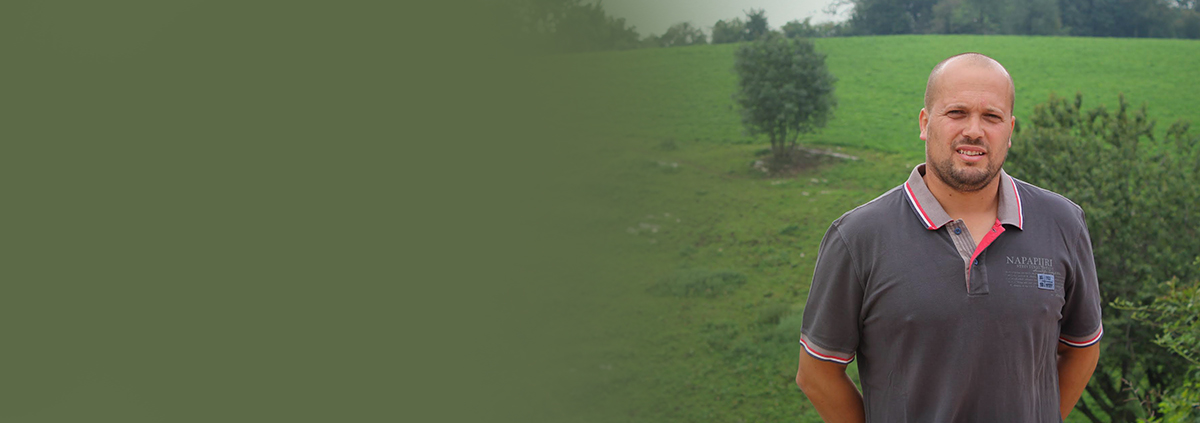 In Lessinia, l'agricoltura coltiva il paesaggio